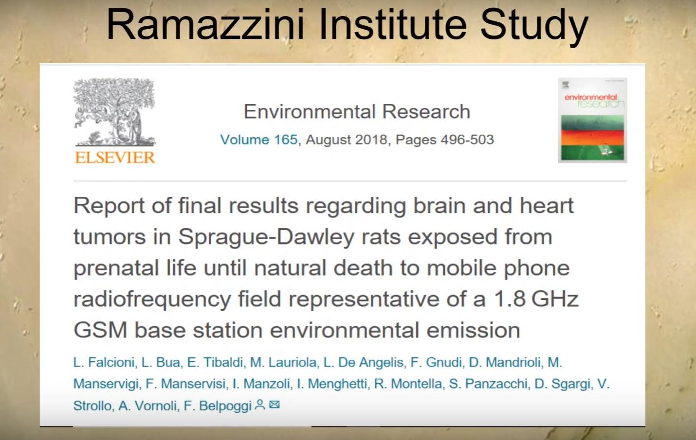 ramazzini institute study