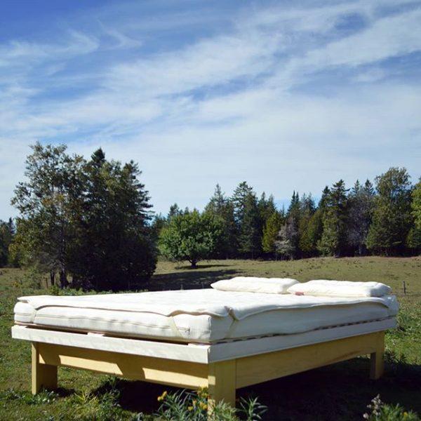 Organic Natural Latex Bed System